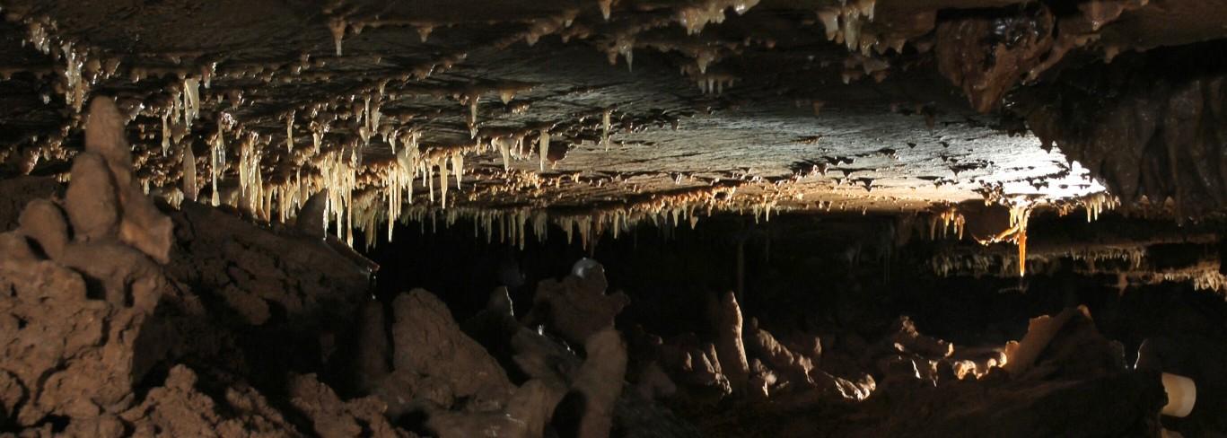 Krápníková výzdoba v jeskyni Balcarka